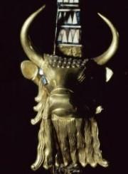 Sumerian Bull