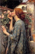 Rose by Waterhouse