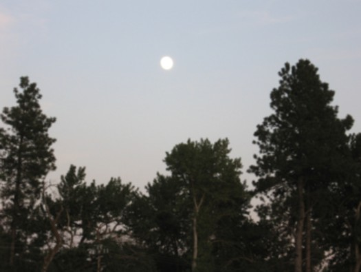 Full Moon in June