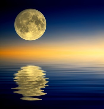 Full Moon in Aquarius reflections