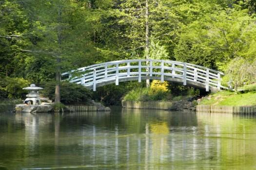 Bridging Earth & Water
