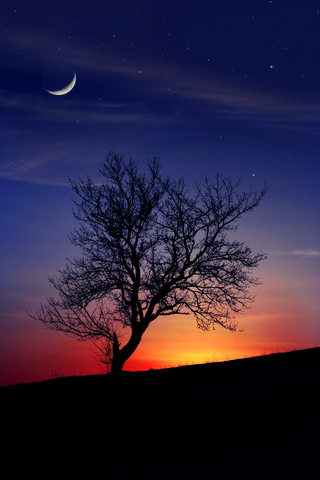 New Moon in Scorpio at sunset.