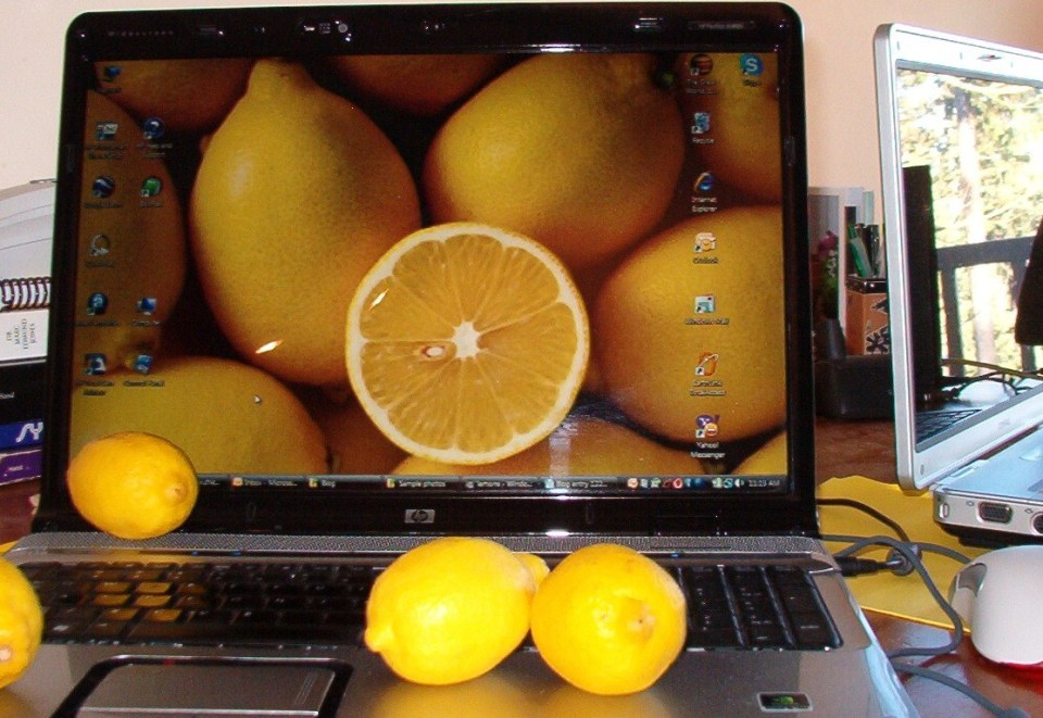 This laptop is a lemon