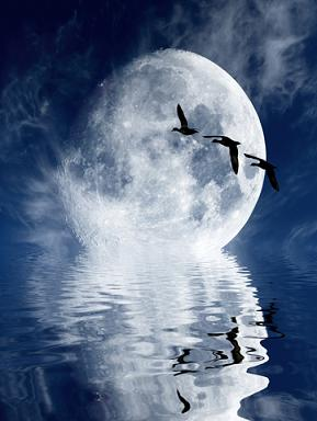 Moon Above the Water