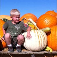 Pumpkin Boy. © Osk Ingad Alden, 2013.