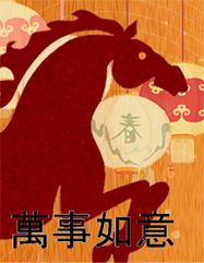 Chinese New Year 2014 3