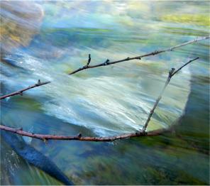 In the flow, by Gretchen Friedrich