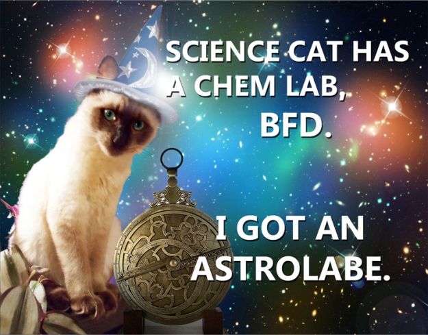 Astrology Cat takes on Science Cat