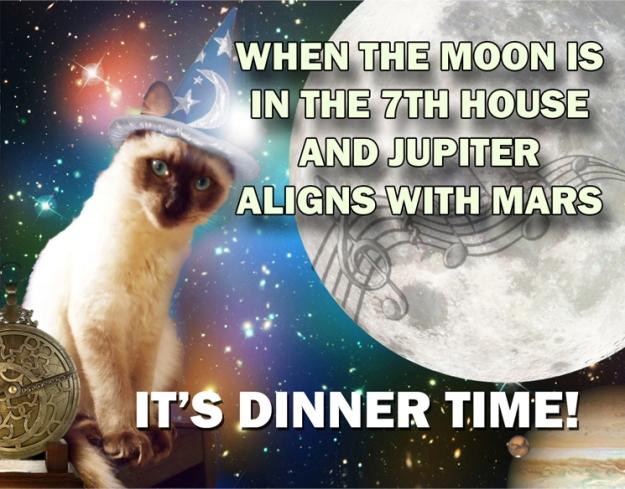 Singing for Dinner