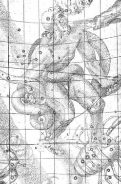 Ophiuchus drawing, Kepler